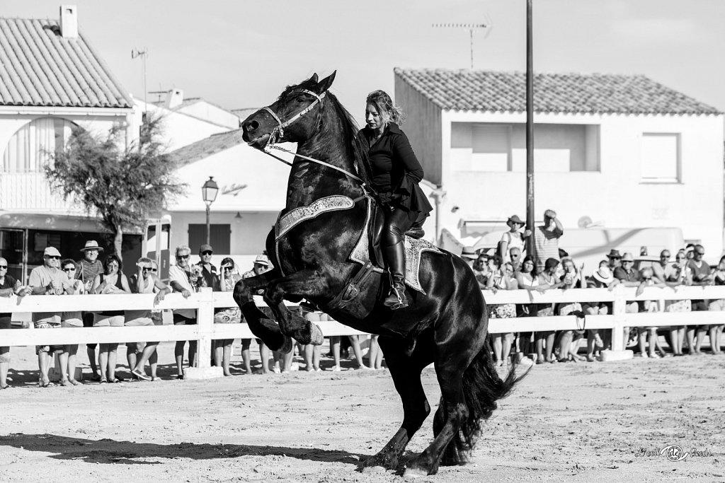 2019-07-15-Feria-Equestre-Ste-Marie-082.jpg