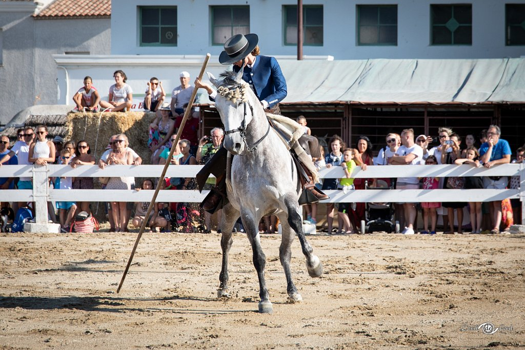 2019-07-15-Feria-Equestre-Ste-Marie-100.jpg