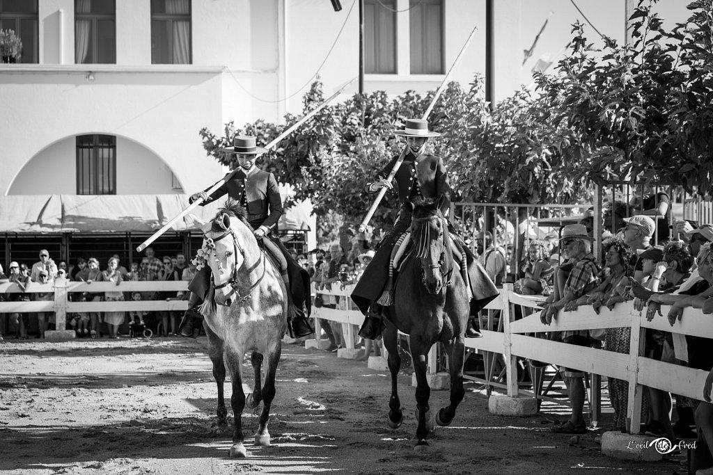 2019-07-15-Feria-Equestre-Ste-Marie-087.jpg